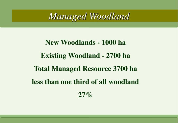 Managed Woodland