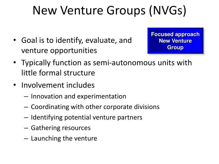 New venture groups nvgs