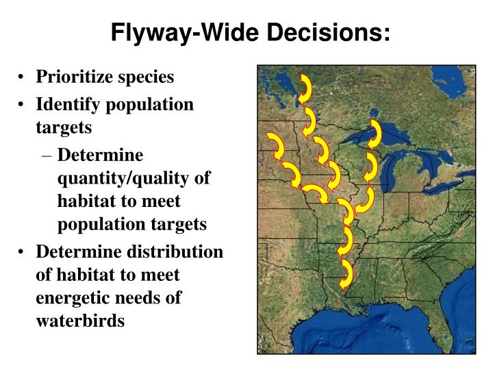 Flyway-Wide Decisions: