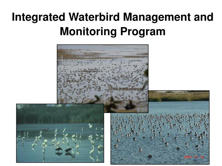 Integrated waterbird management and monitoring program