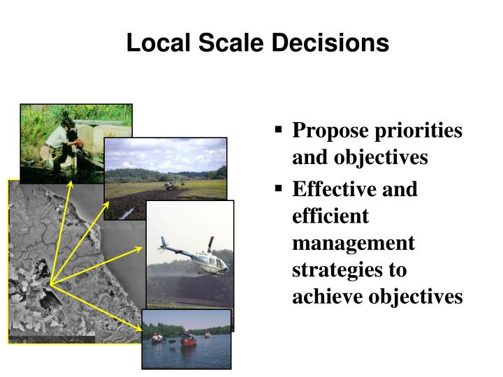 Local Scale Decisions