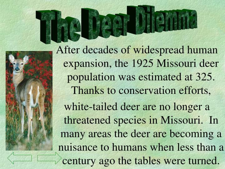 The Deer Dilemma