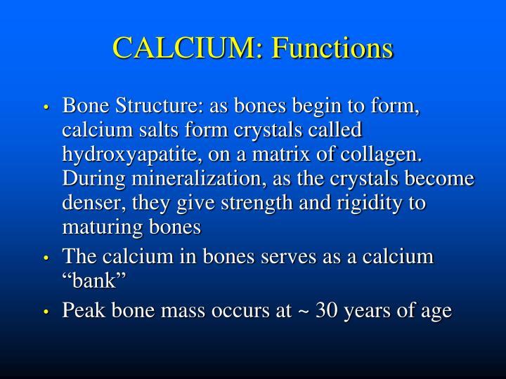 CALCIUM: Functions