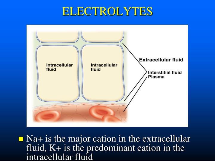 Electrolytes1