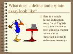 what does a define and explain essay look like