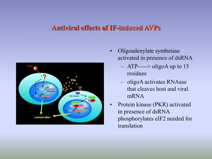 Antiviral effects of IF-induced AVPs