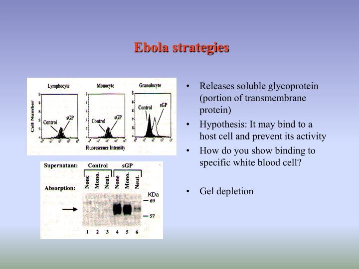 Ebola strategies