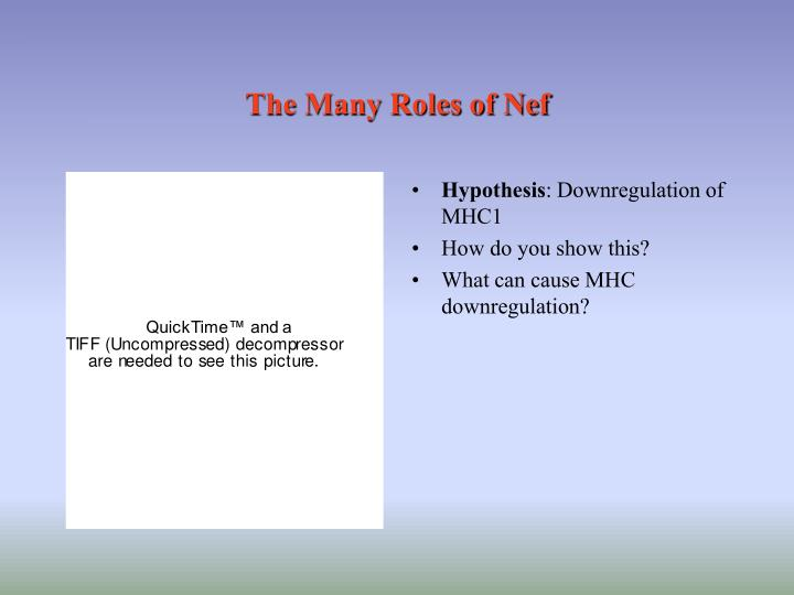 The Many Roles of Nef