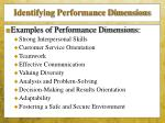 identifying performance dimensions1