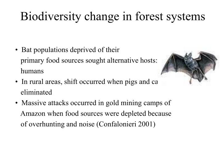 Biodiversity change in forest systems