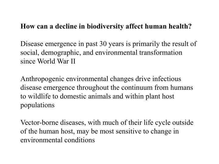How can a decline in biodiversity affect human health?
