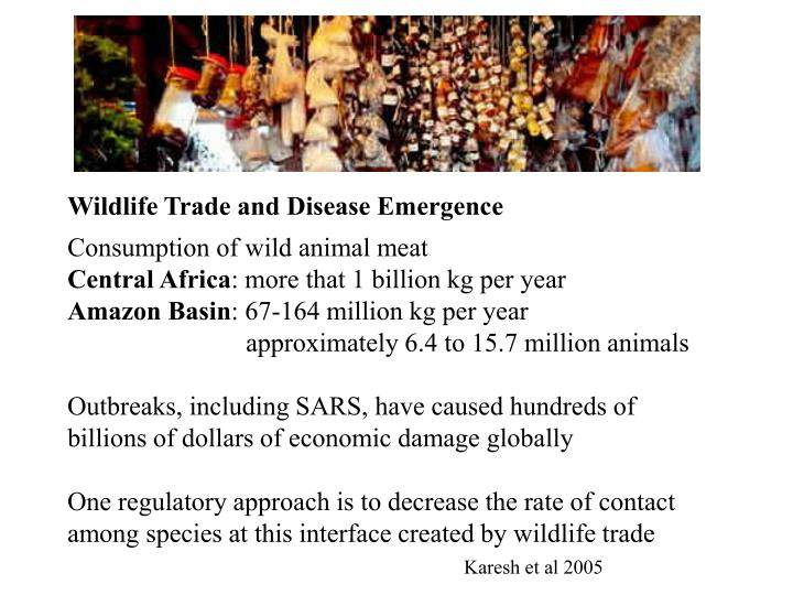 Wildlife Trade and Disease Emergence