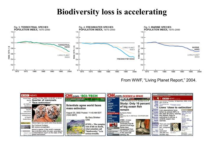 Biodiversity loss is accelerating