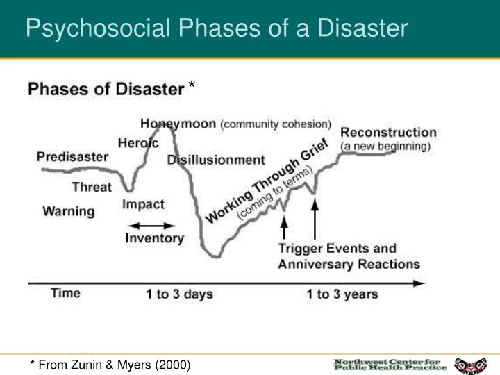 Psychosocial Phases of a Disaster
