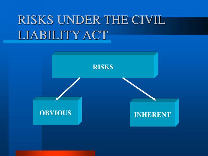 RISKS UNDER THE CIVIL LIABILITY ACT
