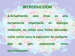 introducci n11