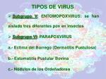 tipos de virus4