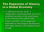the expansion of slavery in a global economy