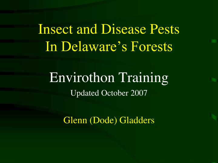 Insect and disease pests in delaware s forests