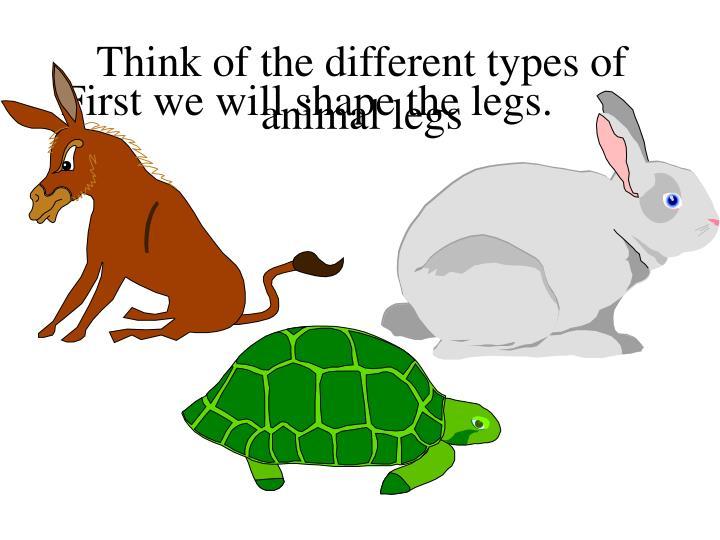 Think of the different types of animal legs