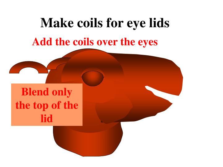 Make coils for eye lids
