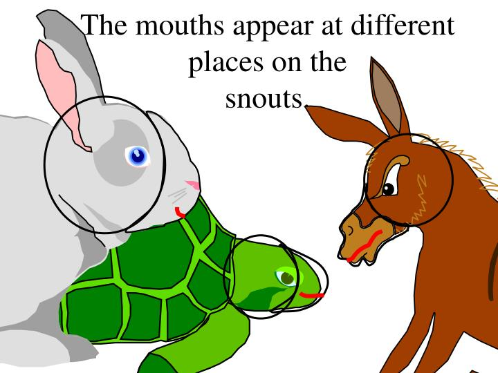 The mouths appear at different places on the