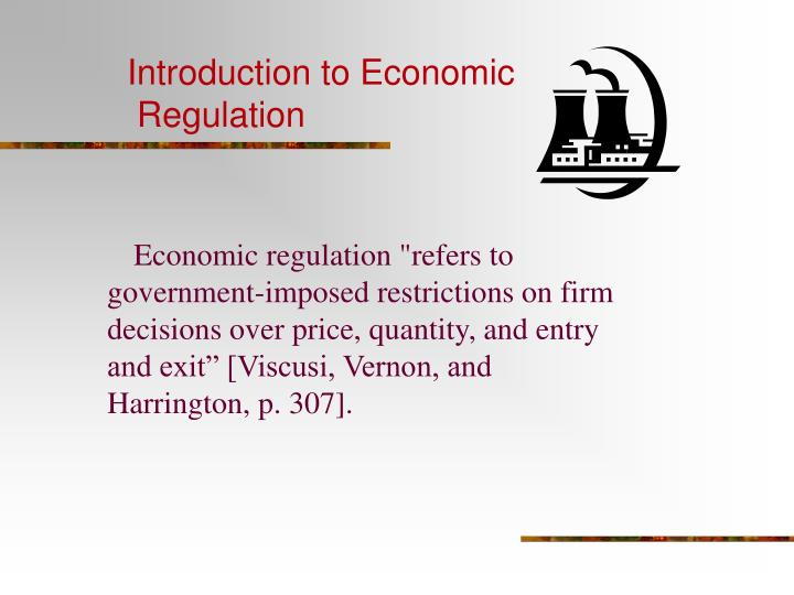 introduction to economic regulation n.