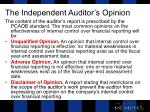the independent auditor s opinion