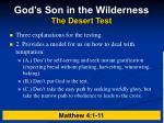 god s son in the wilderness the desert test3