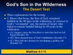 god s son in the wilderness the desert test4