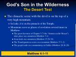 god s son in the wilderness the desert test6