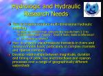 hydrologic and hydraulic research needs
