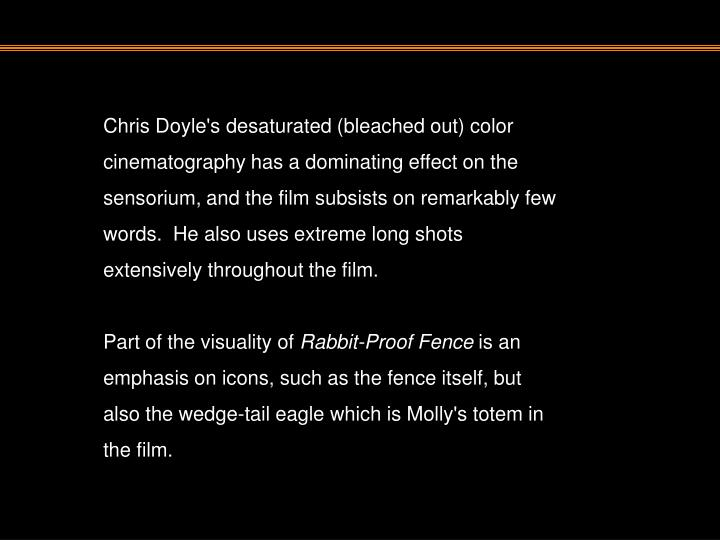 Chris Doyle's desaturated (bleached out) color cinematography has a dominating effect on the sensorium, and the film subsists on remarkably few words.  He also uses extreme long shots extensively throughout the film.