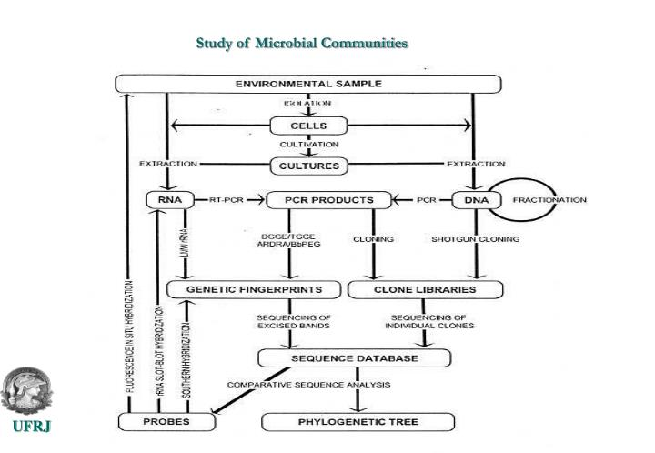 Study of Microbial Communities