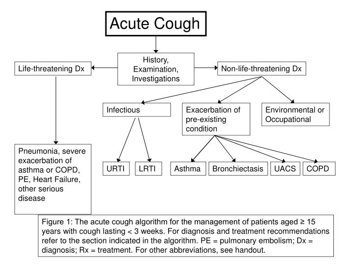 copd exacerbation treatment guidelines antibiotics