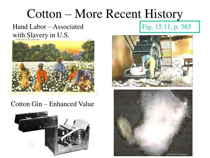 Cotton – More Recent History
