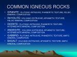 common igneous rocks