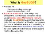 what is geobugs