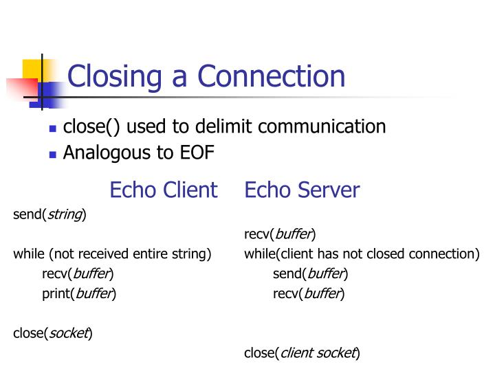 Echo Client