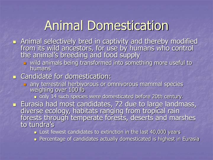 Animal Domestication