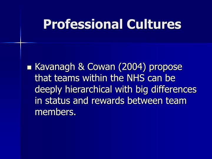 Professional Cultures
