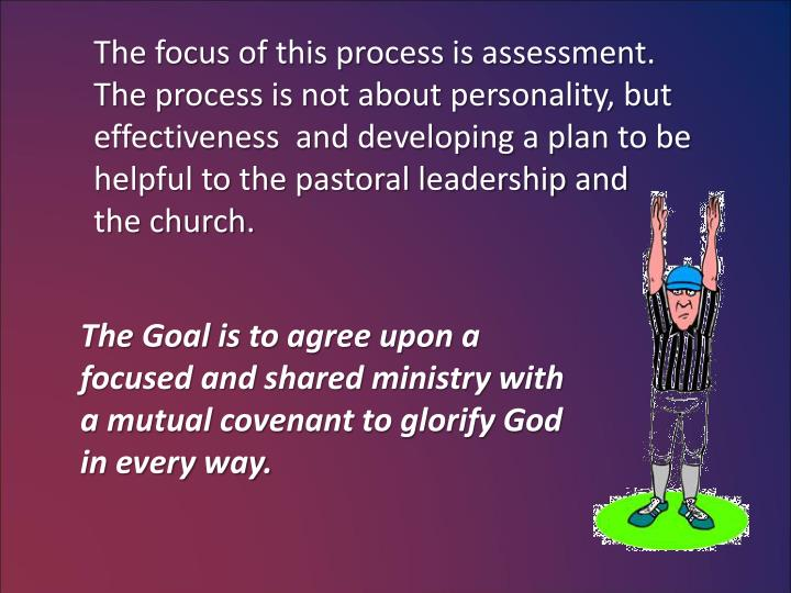 The focus of this process is assessment.
