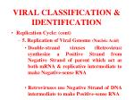 viral classification identification17