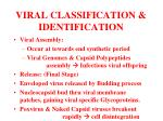 viral classification identification20