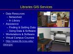 libraries gis services