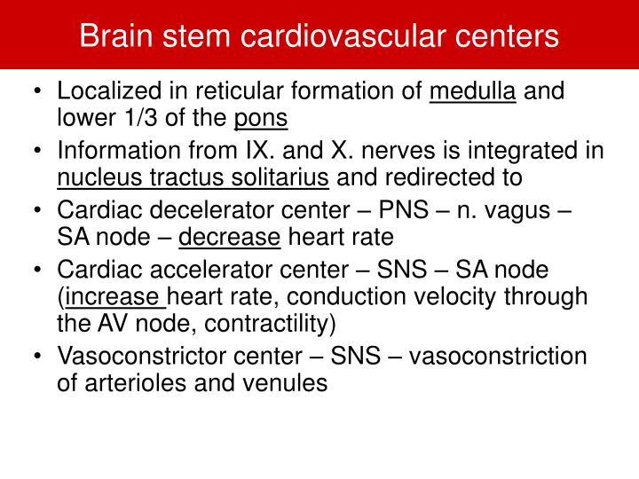 Brain stem cardiovascular centers
