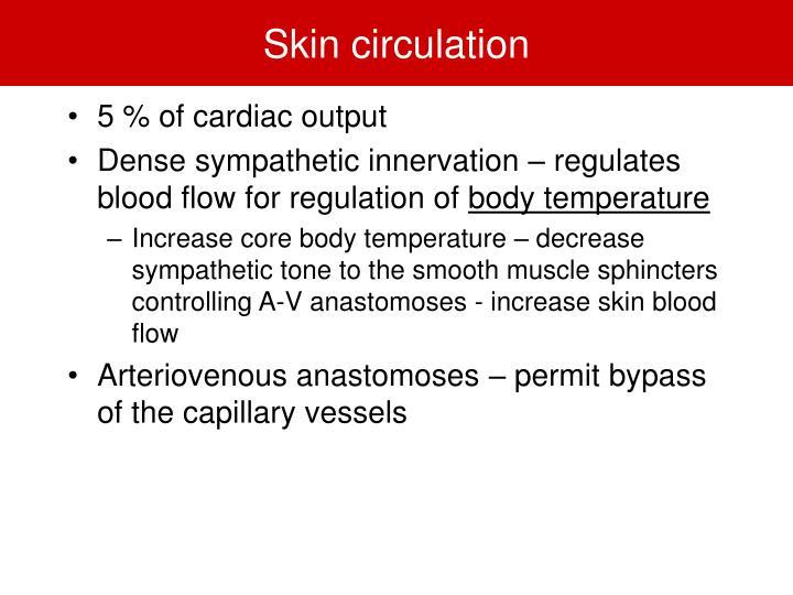Skin circulation