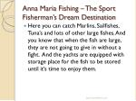 anna maria fishing the sport fisherman s dream destination5