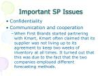 important sp issues1