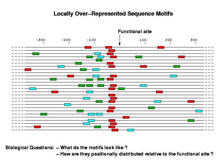 Locally Over-represented Sequence Motifs